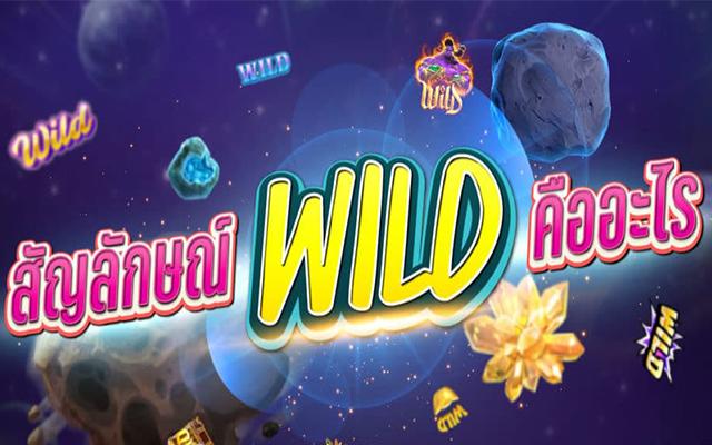 สัญลักษณ์ Wild รวย